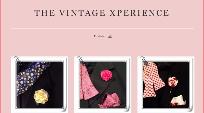 The Vintage Experience by Lisa Rodgers